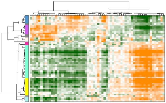 Analysis of heterogeneity and subpopulations · Single Cell